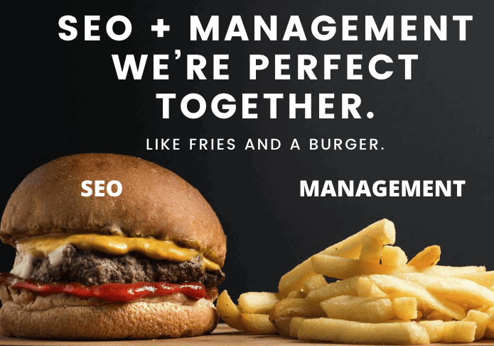 seo management for business